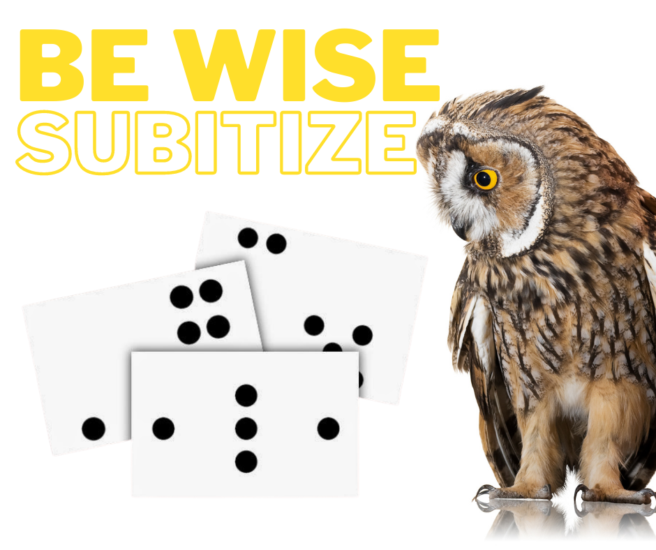 Be Wise…Subitize!